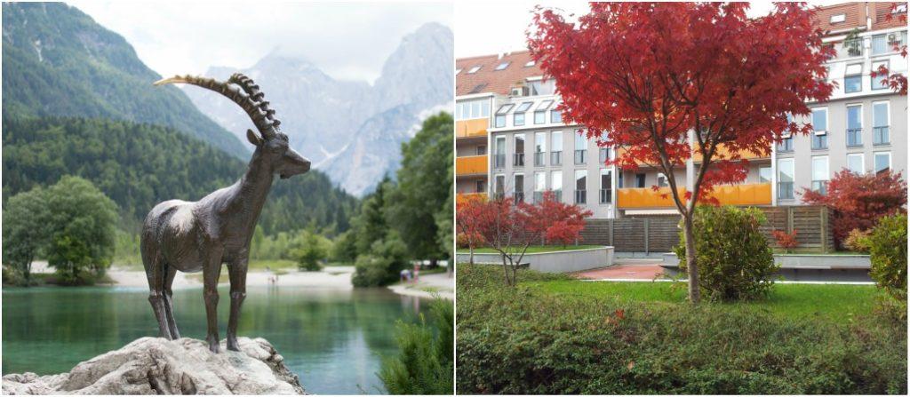 Biti mama negde drugde - u Sloveniji